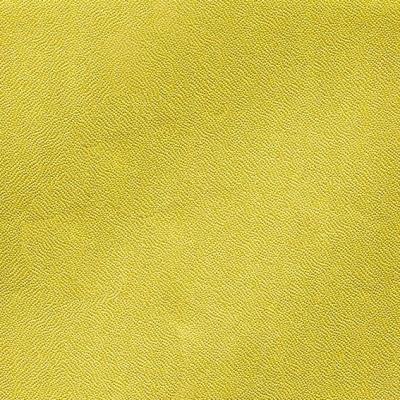 627-2790FGM Reptilie 50m